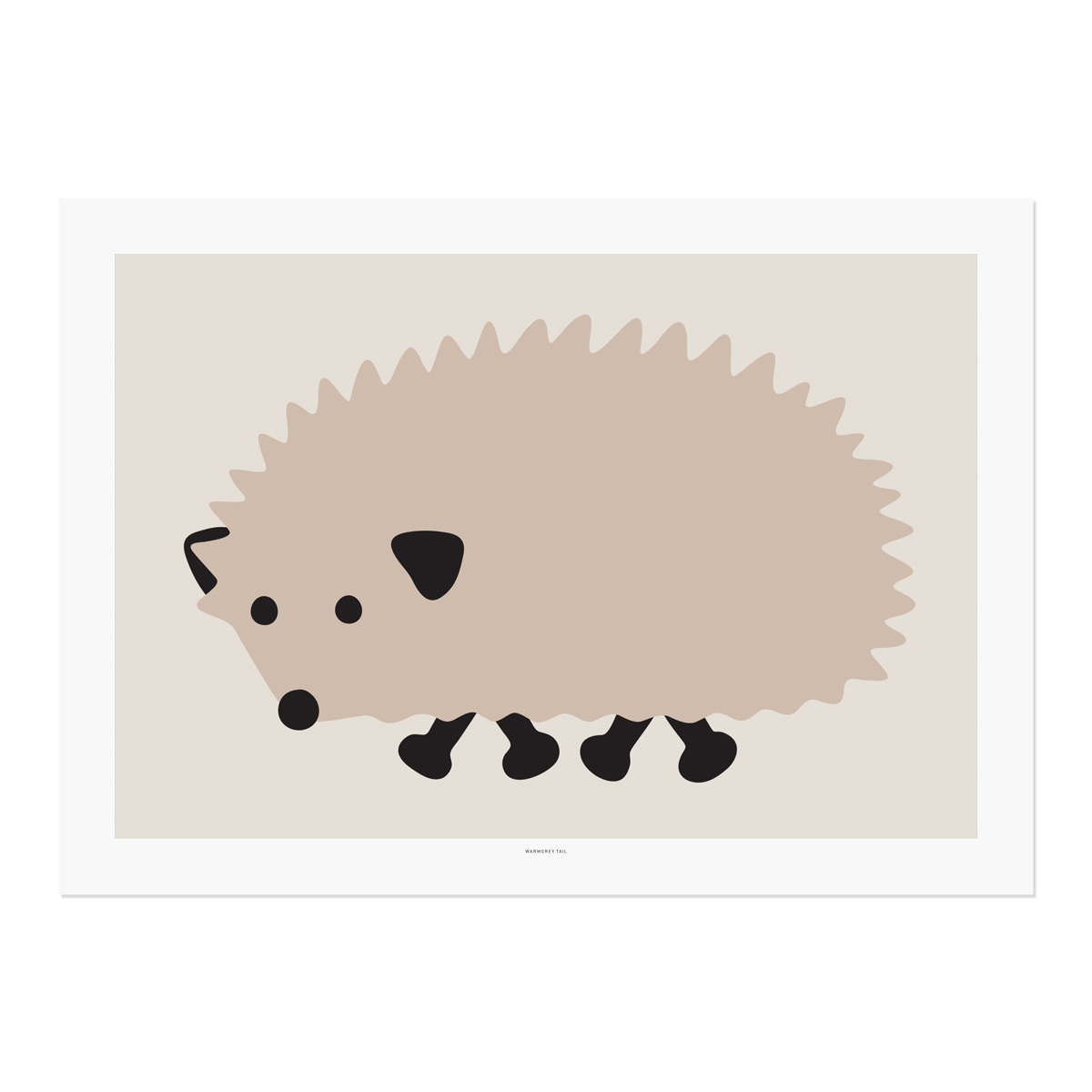 BLACK FOOT HEDGEHOG